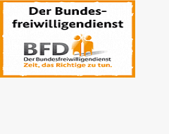 Logo BFD